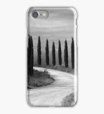 Cypress Trees, Sienna, Italy iPhone Case/Skin