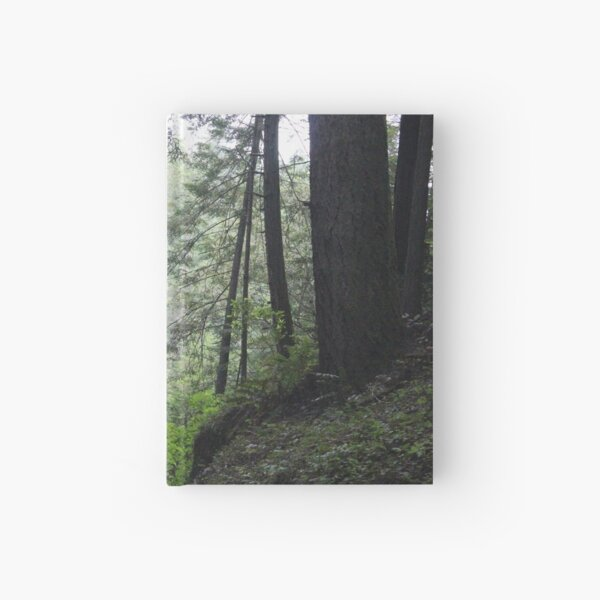 Misty Forest Hardcover Journal