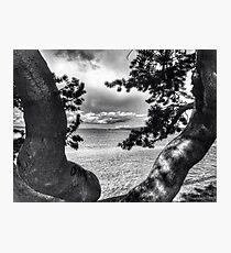 Alki view Photographic Print