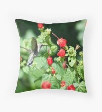 Humminbird Attraction Throw Pillow