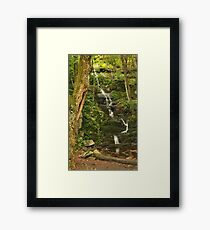 Tillman Ravine and Buttermilk Falls Framed Print