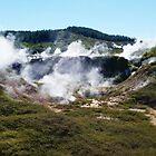 Krater des Dampfes - Krater des Mondes, Taupo, NZ von CleverCharles