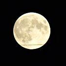 Super Moon by daretoblossom