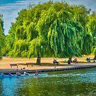 Rowing The Avon by Viv Thompson