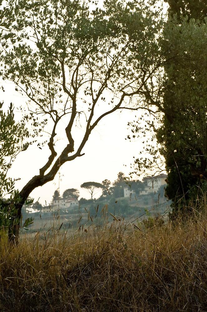 View by Ilva Beretta