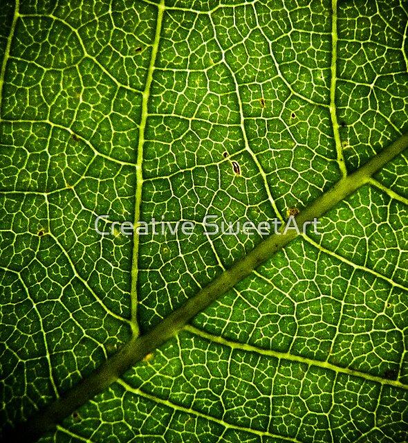 Leaf by Creative SweetArt