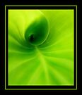 Green spiral by R-evolution GFX