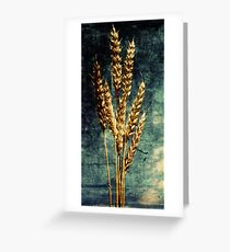 The Final Harvest. Greeting Card