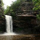 Cedar Falls by Dan Holtmeyer