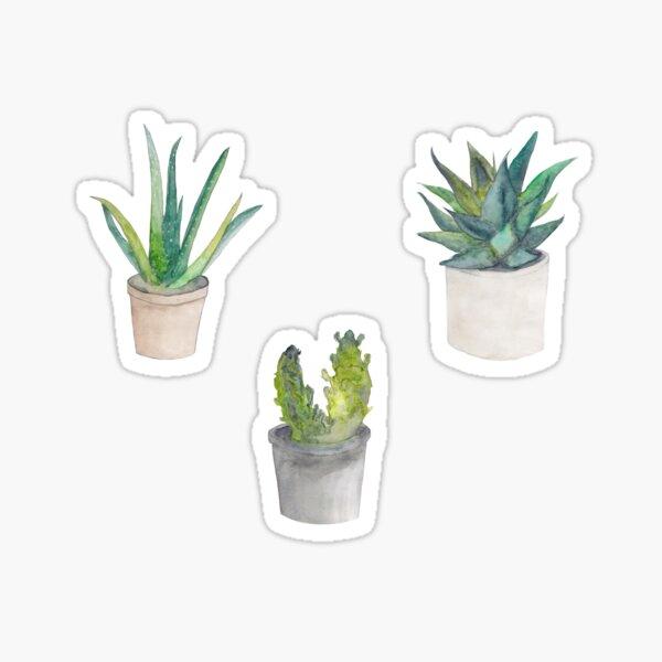 Plant Watercolours Sticker