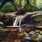 Hidden Falls by Marcella Chapman