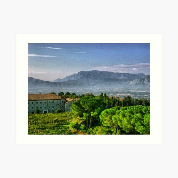 Vineyard in Monte Cassino Art Print