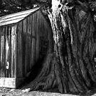 Tree House Monochrome by Wayne King