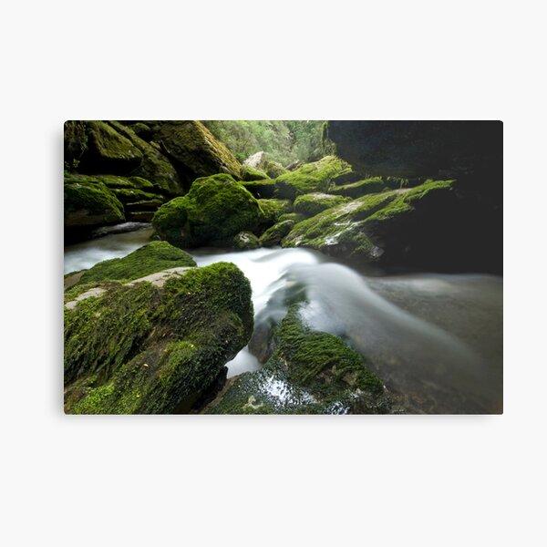 Cave Creek Green. Metal Print