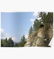 pine trees and rocks mountain landscape Poster