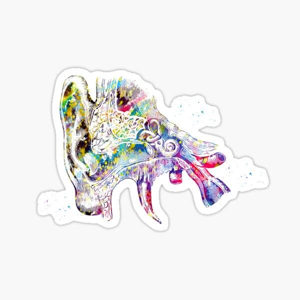 Human ear Sticker