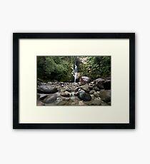Dorothy Falls, Lake Kaniere. Framed Print