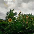Sunshine On a Cloudy Day by Tom Roderick