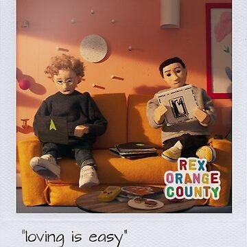 Rex Orange County by southerncassowa