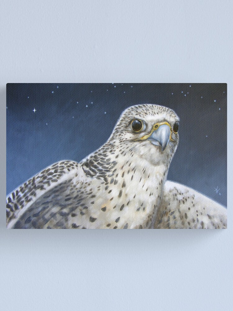 Alternate view of Northern Star Canvas Print