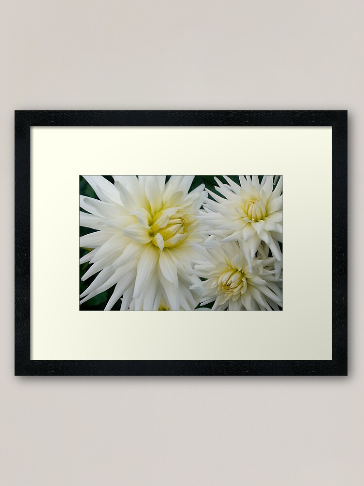 Alternate view of The Flowers That Be - II Framed Art Print