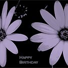 Two Daisies to Say 'Happy Birthday' by Dana Kay