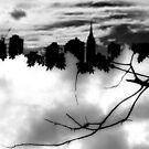 My h̶e̶a̶d̶ home in the clouds.  by ShellyKay
