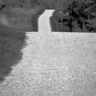 Desolation Road by Brian Gaynor