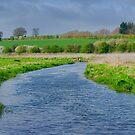 River Bure Norfolk UK by Mark Snelling