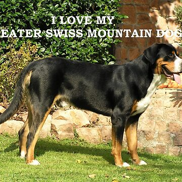greater swiss mountain dog love with picture by marasdaughter