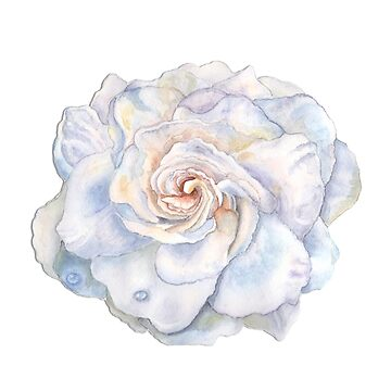 Gardenia Watercolor Print by Lallinda