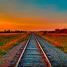 Golden Glow The Long Way Home by PFrogg