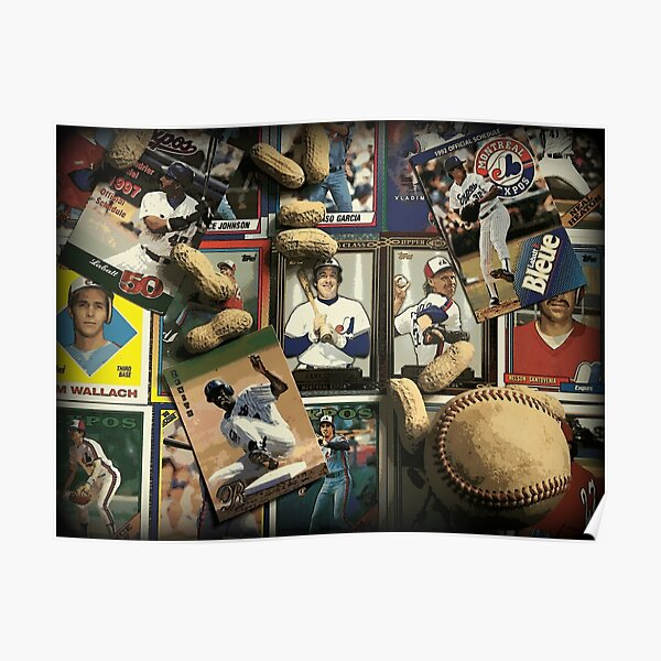 Tribute to the Montreal Expos Poster