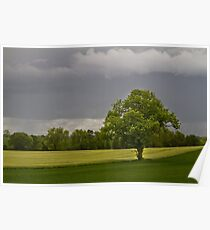 Timeless English Countryside Poster
