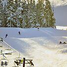 Skiing Mt Baker Washington by Clayton Bruster