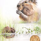 Native american Astrology sighn Bever (Taurus) by AtelierLinty