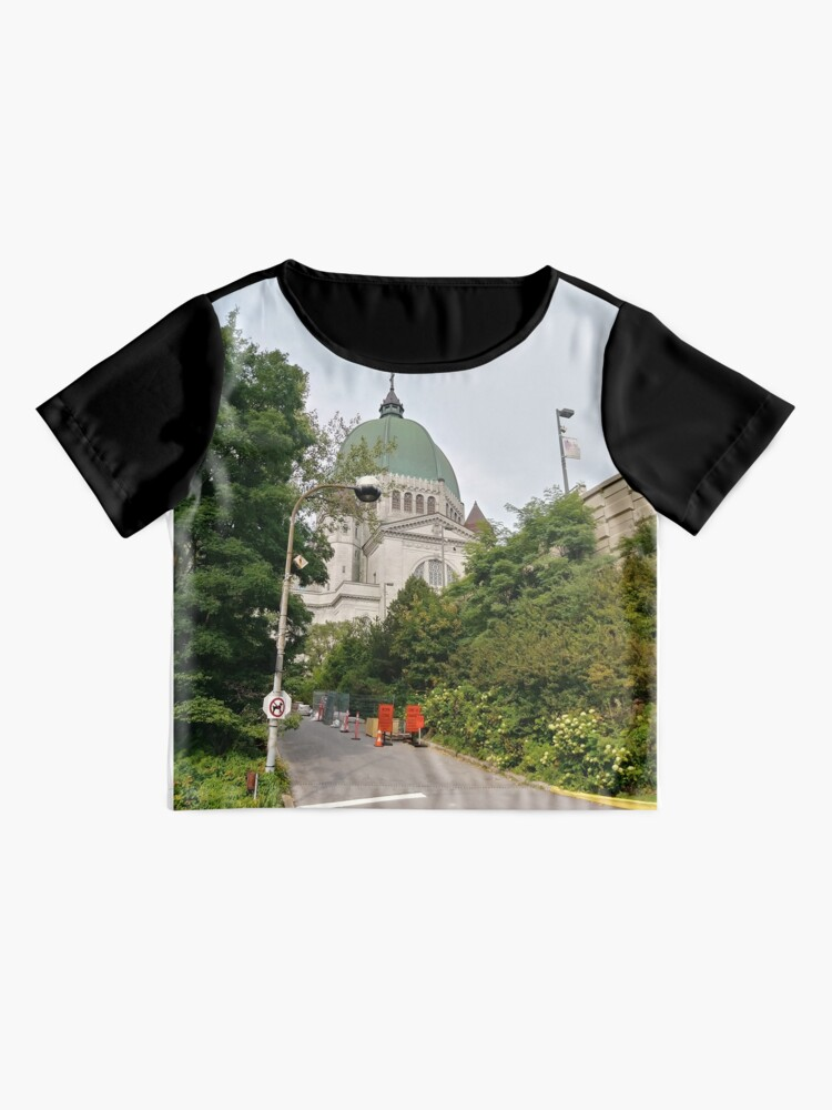 Alternate view of Montreal, #Montreal #City, #MontrealCity, #Canada, #buildings, #streets, #places, #views, #nature, #people, #tourists, #pedestrians, #architecture, #flowers, #monuments, #sculptures, #Cathedral Chiffon Top
