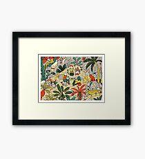 In The Jungle PRINT Framed Print