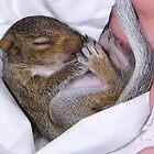 Snuggle Baby by kayzsqrlz