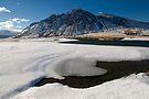Ahuriri Valley by Michael Treloar