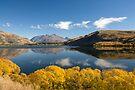 Autumn, Lake Hayes by Michael Treloar