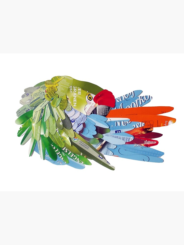 Macaw rearranging feathers by Packeredo