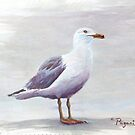 California Gull Acrylic on Paper by Chriss Pagani