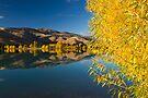 Mackenzie Country Reflections. by Michael Treloar