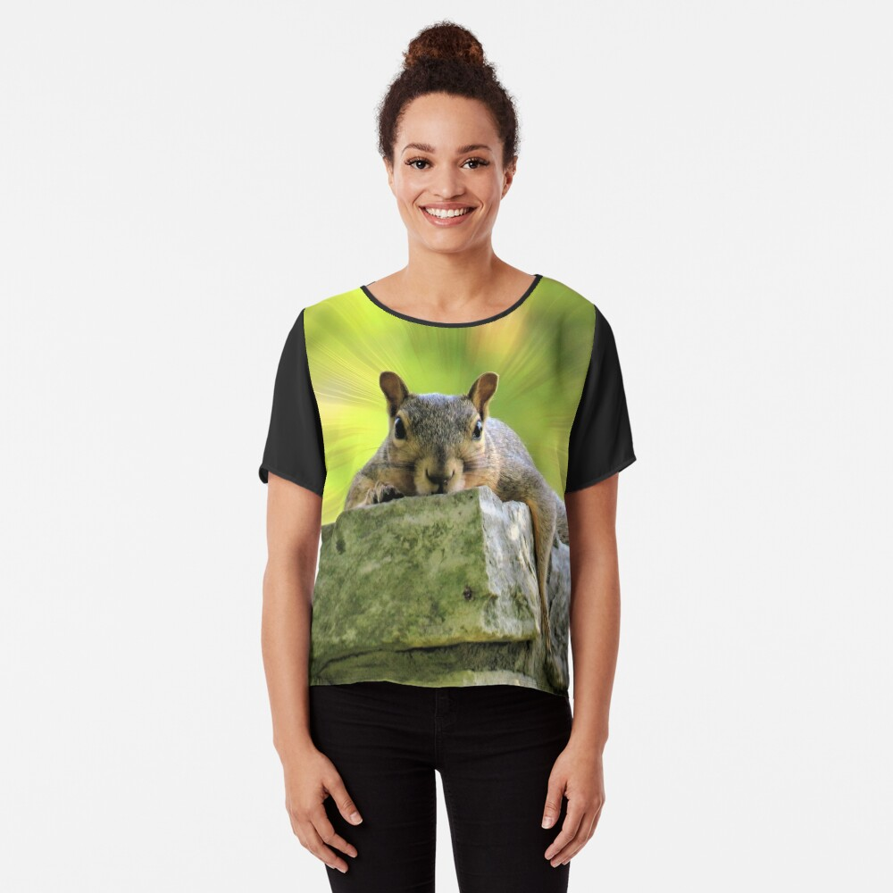 Relaxed Squirrel Chiffon Top