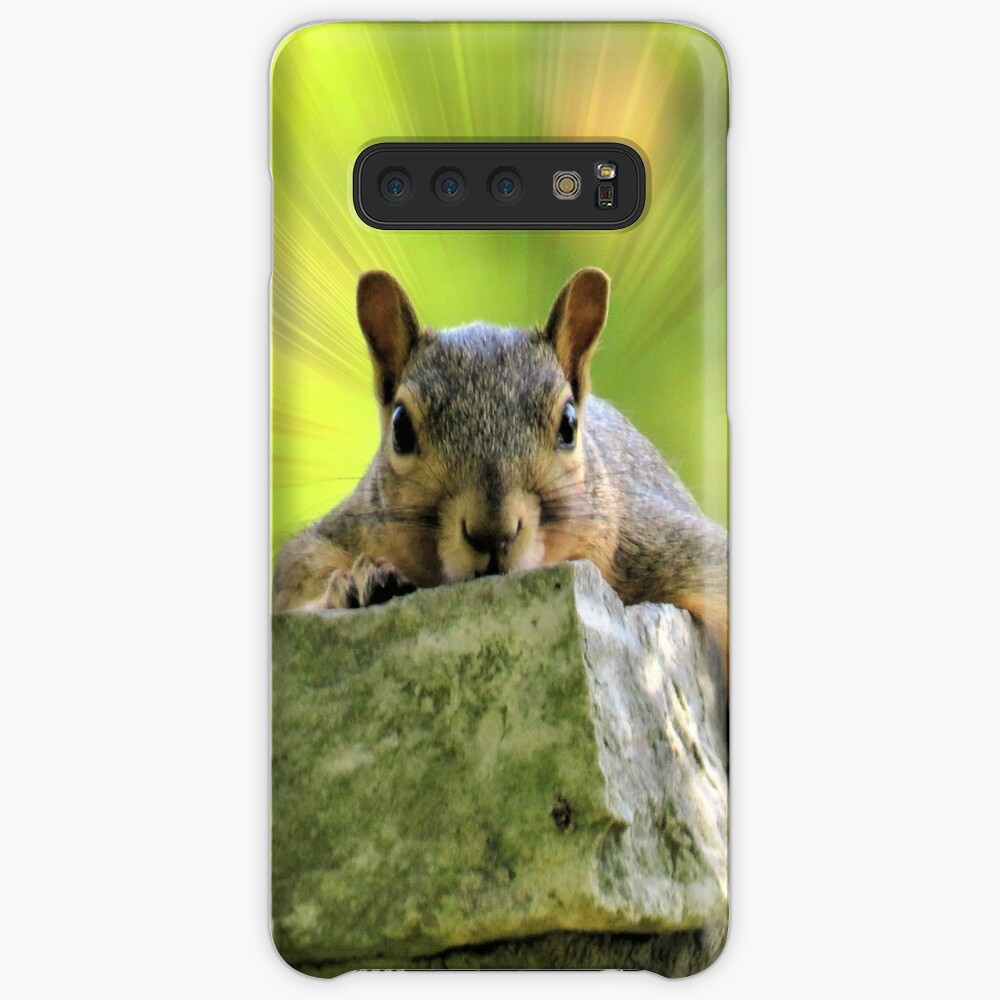 Relaxed Squirrel Case & Skin for Samsung Galaxy