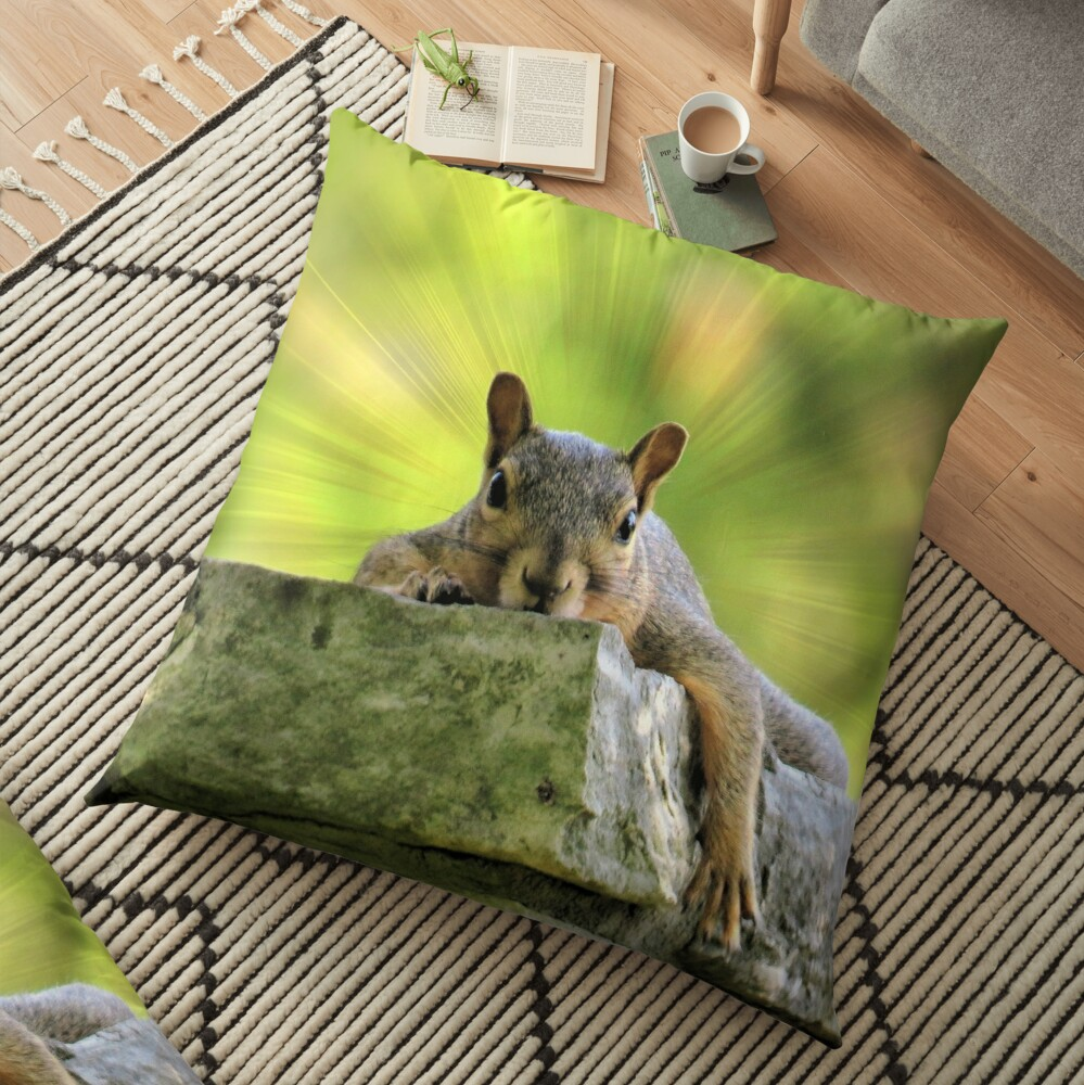 Relaxed Squirrel Floor Pillow