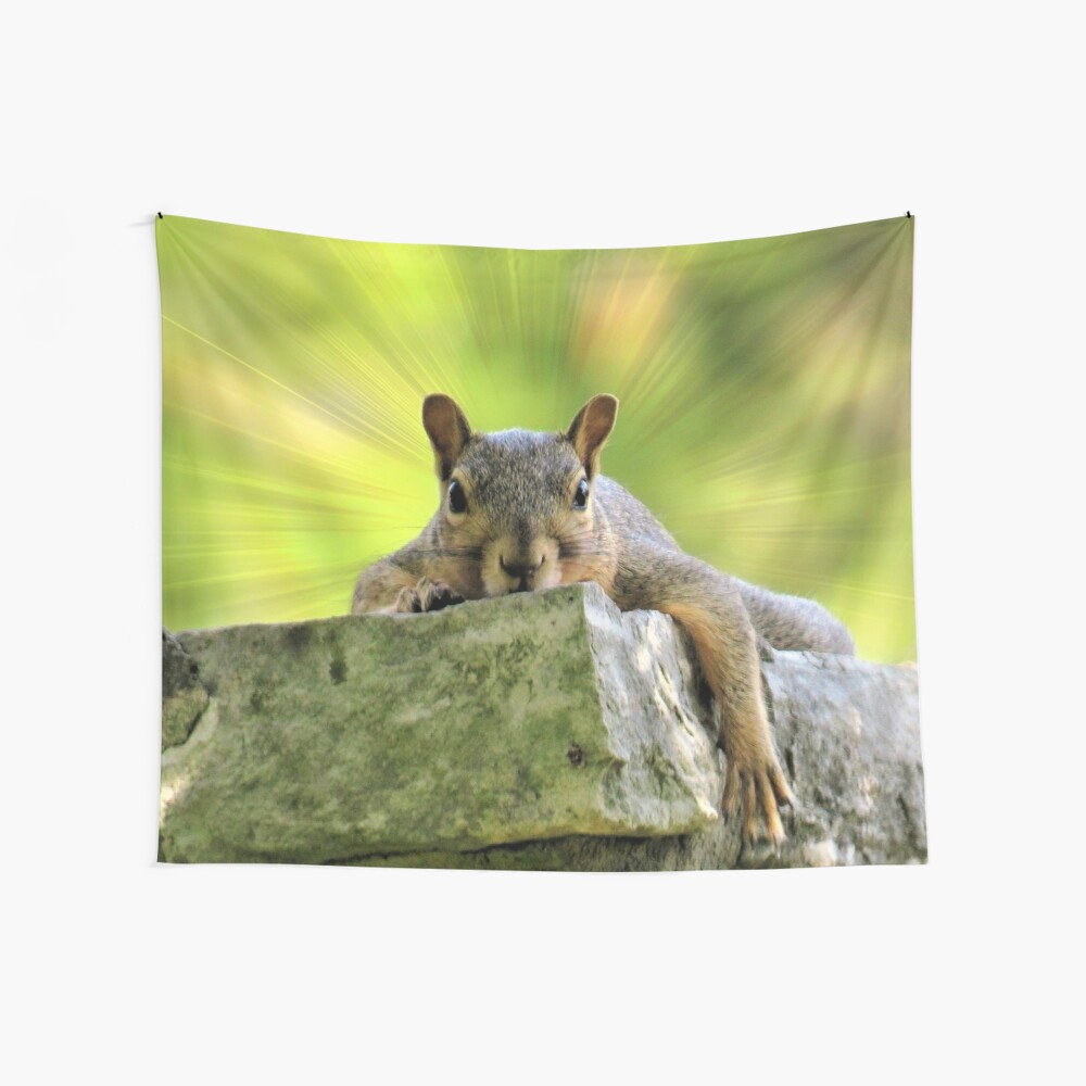 Relaxed Squirrel Wall Tapestry