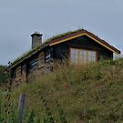 Norwegian Style Cottage by HELUA