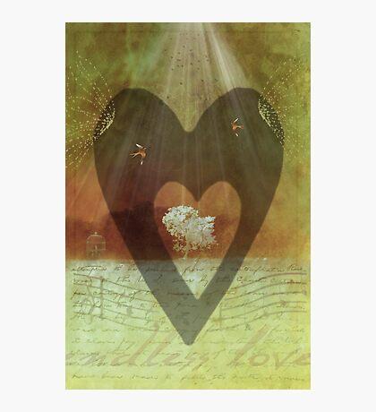 endless love Photographic Print